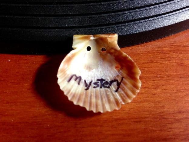 MysterySeashell